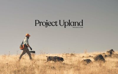 Building Engagement: Q&A With Project Upland